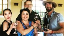 Full-day Casablanca Valley Sparkling Wine Tasting Tour from Santiago, Santiago, Wine Tasting & ...