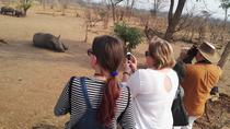 Game Drive and Waking Safari, Livingstone, Cultural Tours