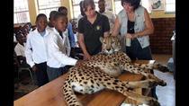 Ann Van Dyk Cheetah Centre Half-Day Tour from Johannesburg, Johannesburg, Half-day Tours