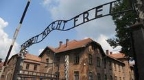 Combined Auschwitz Birkenau and Salt Mine Group Tour from Krakow, Krakow, Historical & Heritage ...