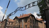 Tour combinato di Auschwitz Birkenau e Salt Mine Group da Cracovia, Krakow, Historical & Heritage Tours