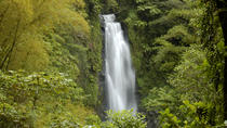 Dominica Full Day Round Island Tour, Dominica, Full-day Tours