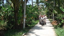 Small Group Ben Tre Excursion - Mekong Insight Full Day, Ho Chi Minh City, Cultural Tours