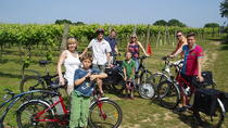 Tour in bicicletta dei vigneti nel Kent, South East England, Bike & Mountain Bike Tours