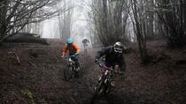 Mountain Bike-Abenteuer in Punta Arenas, Punta Arenas, Bike & Mountain Bike Tours