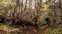 Patagonia Small Group Mountain Bike Tour from Punta Arenas, Punta Arenas
