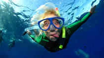 Full-Day Snorkeling Rental Package, San Diego, Snorkeling