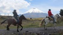 Cotopaxi Volcano Horseback Ride Excursion from Quito, Quito, Horseback Riding