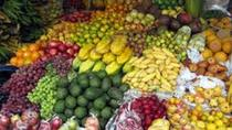 Cultural Historical Culinary and Food Market Tour in Quito, Quito, Cultural Tours