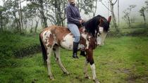 Equator Line Including 3-Hours Horseback Ride in Pululahua Volcano, Quito, Day Trips