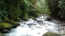 Private 2-Day Mindo Cloud Forest from Quito, Quito, Overnight Tours
