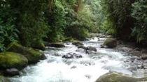 Private Tour: 2-Day Mindo Cloud Forest Overnight Tour from Quito, Quito, Overnight Tours