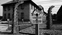 Day Trip to Auschwitz-Birkenau Memorial from Krakow, Krakow, Day Trips
