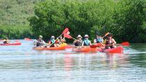 Daytime Mangroves to Beach Kayak Tour, Fajardo, Kayaking & Canoeing