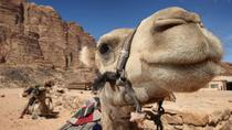Sightseeing Tour to Petra from Amman, Amman