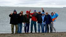 Arctic Ocean and Prudhoe Bay Adventure from Fairbanks, Fairbanks, null