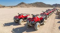 El Gouna: 3 Hours Quad Biking, Camel Ride, Hurghada, Nature & Wildlife