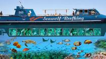 From Hurghada, Glass Boat Famous Trip, Hurghada, Day Cruises