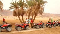 Sharm Trips: Sunset Quad Biking, Sharm el Sheikh, 4WD, ATV & Off-Road Tours