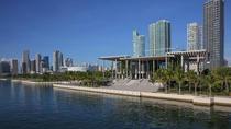 Pérez Art Museum Admission, Miami, null