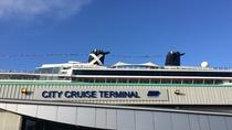 Private MPV Arrival Transfer from Southampton Cruise Terminals to London, London, Airport & Ground...