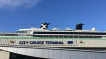 Private Port Arrival Transfer: Southampton Cruise Terminals to Gatwick Airport, Southampton, Port ...