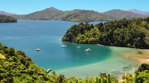 Full Day Queen Charlotte Kayak and Walking Tour from Picton, Picton