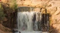 Valley of Whales and Wadi El Rayan Water Falls Day Tour from Cairo, Cairo, Day Trips