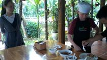 Cooking Tour Experience in an Eco-Tourism Hoi An Village, Hoi An, Private Sightseeing Tours
