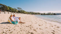 Sydney Shore Excursion: Half-Day Sydney City Highlights with Bondi Beach and Watsons Bay, Sydney, ...