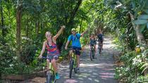 Tour Green Bike di piccolo gruppo di Bangkok, Bangkok, Tour in bici e mountain bike