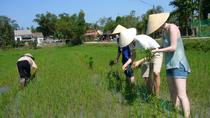 Tour Pomeridiano in Bicicletta tra le Campagne di Hoi An, Hoi An, Bike & Mountain Bike Tours