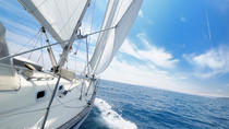 3 Hour San Diego Sailing Adventure, San Diego, Dolphin & Whale Watching