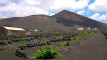 Lanzarote La Geria Vineyards Small-Group Half-Day Walking Tour, Lanzarote