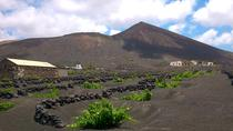 Vineyards of Geria Walking Tour, Lanzarote