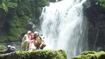 Half-Day Hiking Tour to Latas Waterfall from Tena, Tena, Hiking & Camping