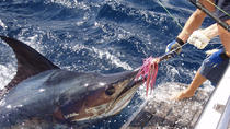 Big Game Fishing from Albufeira, Albufeira, Fishing Charters & Tours