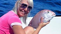 Half-Day Reef Fishing from Vilamoura, Faro, Fishing Charters & Tours