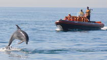 Private Dolphin Watching and Cave Tour from Albufeira, Albufeira, Dolphin & Whale Watching