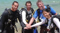 Private Guided Shore Diving Tour, Rincón, Private Sightseeing Tours