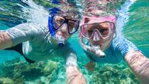 Private Rincon Snorkeling Adventure, Rincón, Snorkeling