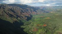 Private Waimea Canyon Kauai Sightseeing Tour, Kauai