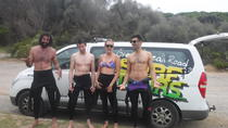 2 Day Great Ocean Road Surf and See Tour from Melbourne, Melbourne, Multi-day Tours