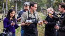 Chef-Led Hunter Valley Gourmet Food and Wine Day Trip from Sydney, Sydney, null
