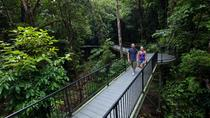 4-Day Cairns with Great Barrier Reef and Daintree Rainforest, Cairns & the Tropical North,...