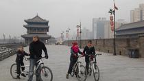Xi'an City Day Tour, Xian, Private Sightseeing Tours