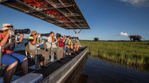 Photographic River Cruise on The Chobe, Kasane, Safaris