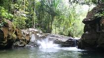 Private Tour: Family Trekking in Langkawi, Langkawi, Walking Tours