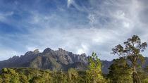 Full-Day Kinabalu Park and Poring Hot Spring