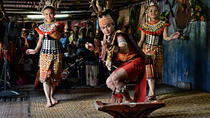 Half-Day Sarawak Bidayuh Longhouse Experience from Kuching City, Kuching, Half-day Tours